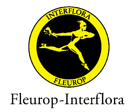 enviar interflora